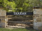 Hunter Valley Accommodation - Tharah - Exterior