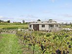 Hunter Valley Accommodation - The Lake House * 201 - Lovedale - Exterior