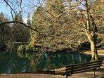 One Portland's best, Laurelhurst park is a 10 min walk.