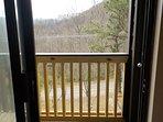 View from Patio Doors in Master Bedroom