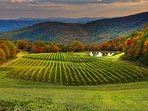 Visit award winning Burntshirt Vineyards for a wine tasting.It's located less than 15 minutes away.