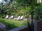 Private tropical garden