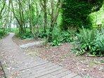 Woodland walk adjoins the grounds