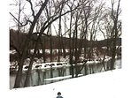 creek in the winter