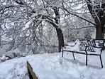A snowy day at Lake Junaluska