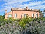 Bright and sunny villa with sea view