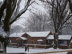 Woodpecker Lodge in the snow
