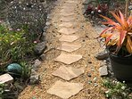 Follow the paths and boardwalk through the garden.