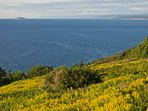 Come and enjoy! The Cape Breton Highlands National Park in the background, less than an hour drive