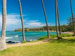 Napili Bay is the ideal place to enjoy swimming, snorkeling, paddleboard or just an afternoon of sunshine!