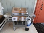 This Weber gas grill allows you to sear a steak or cook wonderful seafood