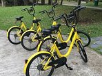 OFO bike hire - download the App and have trouble free biking for 50p per 30mins - unbelievable!
