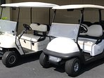 Two 4-Seater Golf Carts Included!