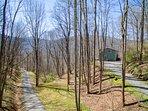 driveway at cabin