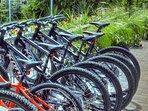 Get around town with bike rental access.