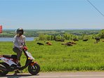 Enjoy beautiful landscapes on Ile d'Orleans while riding