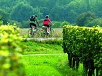 - Wine Tourism on a Bicycle
