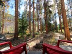 Your backyard in the CO mountains!