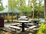 Common area has gas grill and picnic table.