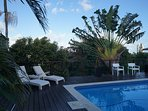 Tropical gardens surround our pool area