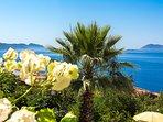 View from Villa Mimosa