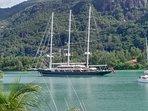 A 'schooner' sailing past