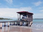 Private boat tours from the Villa's dock to the most exotic spots in Bocas!