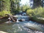 Duck Creek in the Spring - within Walking Distance from Lodge