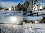 A white Xmas at Tickeridge Farm?