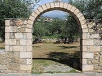 The archway into our olive grove.