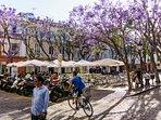 Plaza del Mentidero 500 meters from apartment