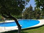 pool and sunbathing area