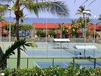 Surf & Racquet Club 7-204