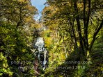 Waterfall in Queen Elisabeth Forest Park 10 mins walk from the door !