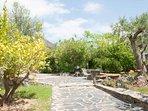 jardín zona lateral de la propiedad