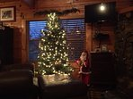 Holidays in the Smoky Mountains