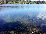 Langford Lake