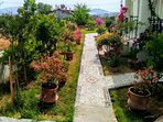 The villa is surrounded by beautiful flowers and trees