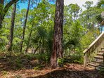 The exterior stairs on the back porch take you to the floor of the coastal forest.