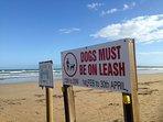 Dog beach information.