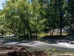 River/Surroundings/Nature