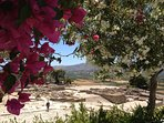 The ruins of the Minoan palace at Phaestos - an hour's drive away
