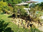 La piscine, ses abords et son exotisme.