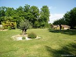 Vue sur le cottage, le jardin et l'olivier centenaire.