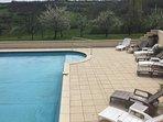 piscine 10m x 5m au sel chauffée + alarme