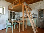 Lizard Kitchen and loft bed