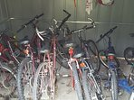 Bikes in the shed