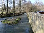 The Wellow Brook running alongside the Mill House