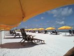 ENJOY THE BEAUTY OF CLEARWATER BEACH WITH ITS SUGAR WHITE SAND .