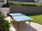 Table tennis de table. Raquettes et balle disponibles